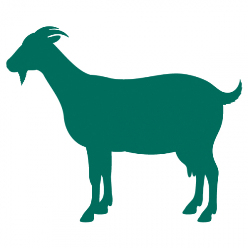 Organic goat feeds