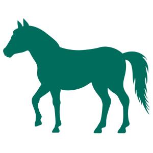 organic horse & pony feeds