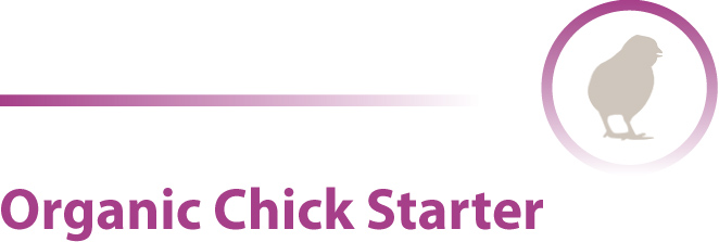 Organic Chick Starter Poultry feed